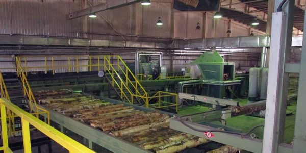 История производства фанеры